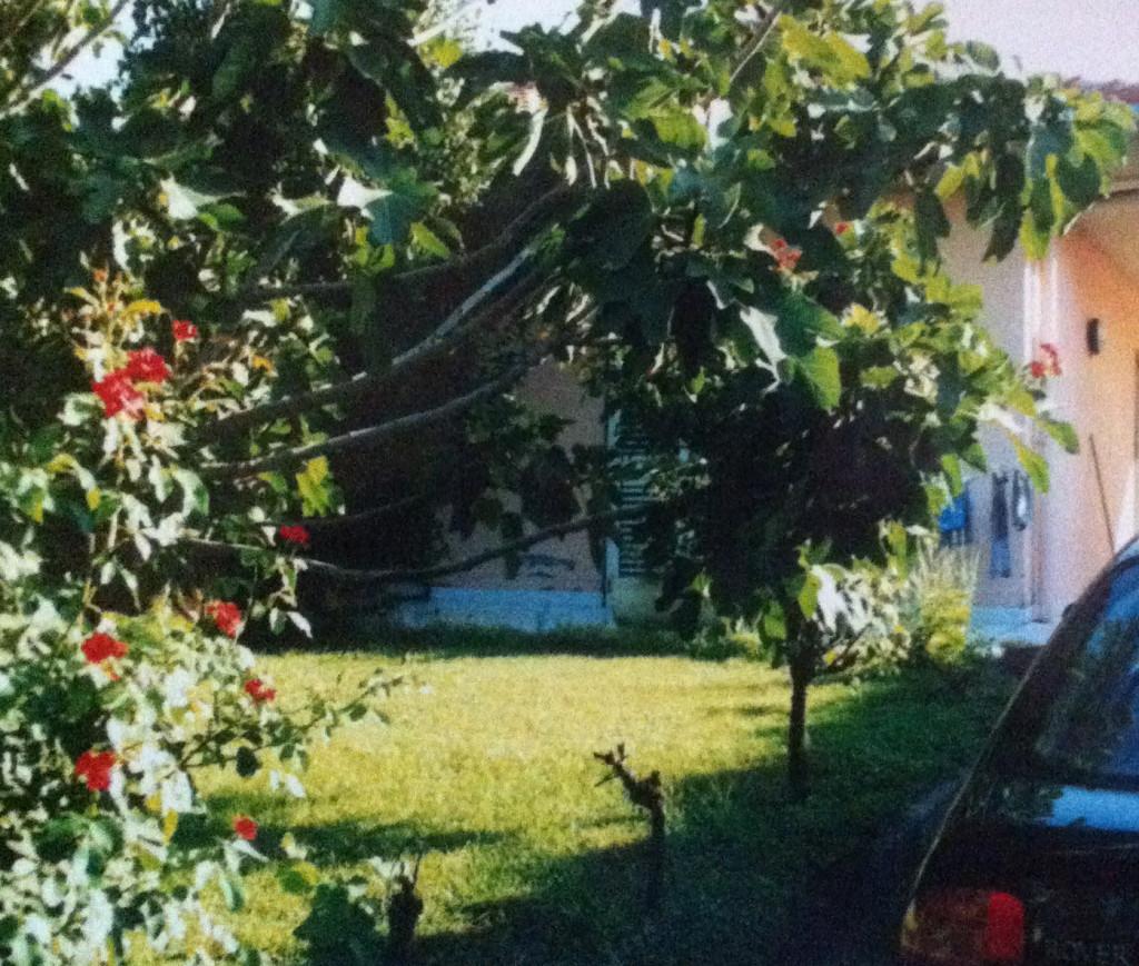 Sicilia- Casa-cu-smochini