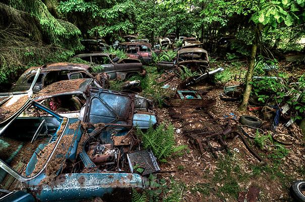Masini 10 - boredpanda.com