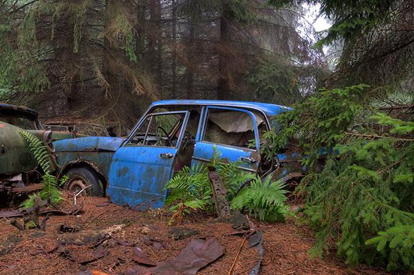Masini 8 - boredpanda.com