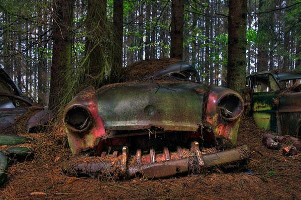 Masini 9 - boredpanda.com