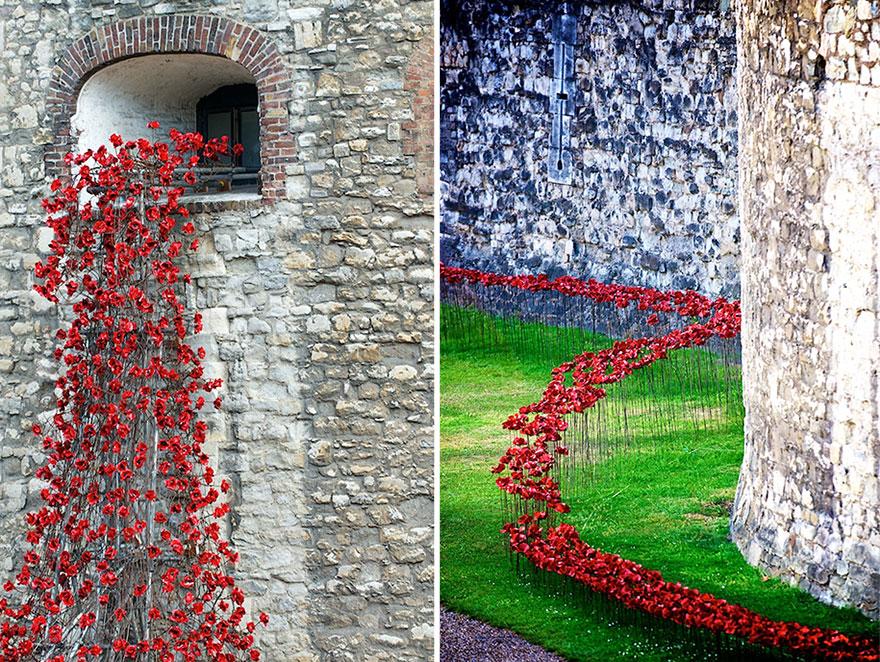 Flori in turnul din Londra 2
