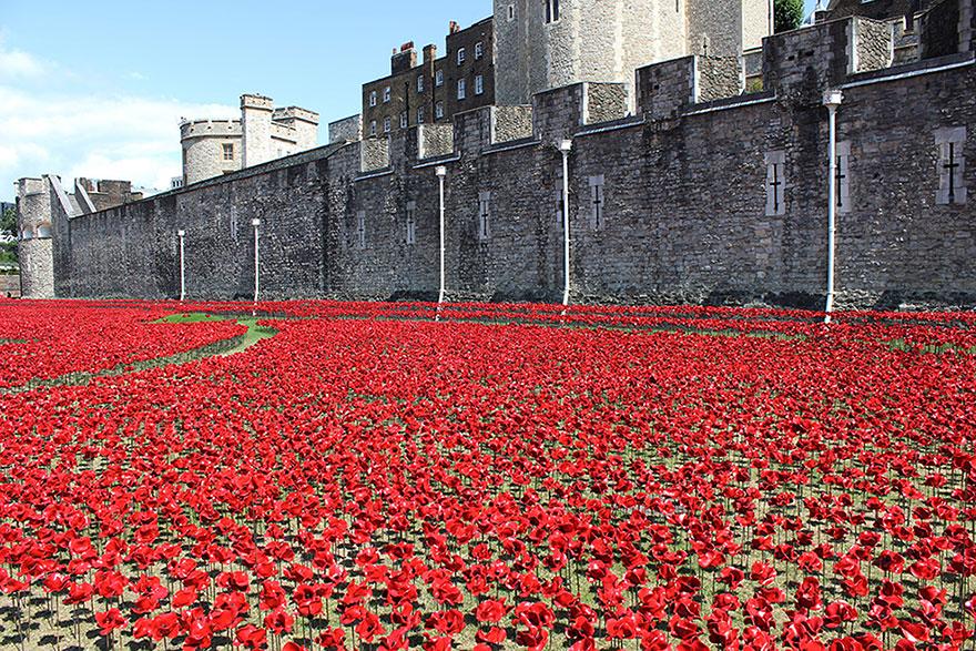Flori in turnul din Londra 4