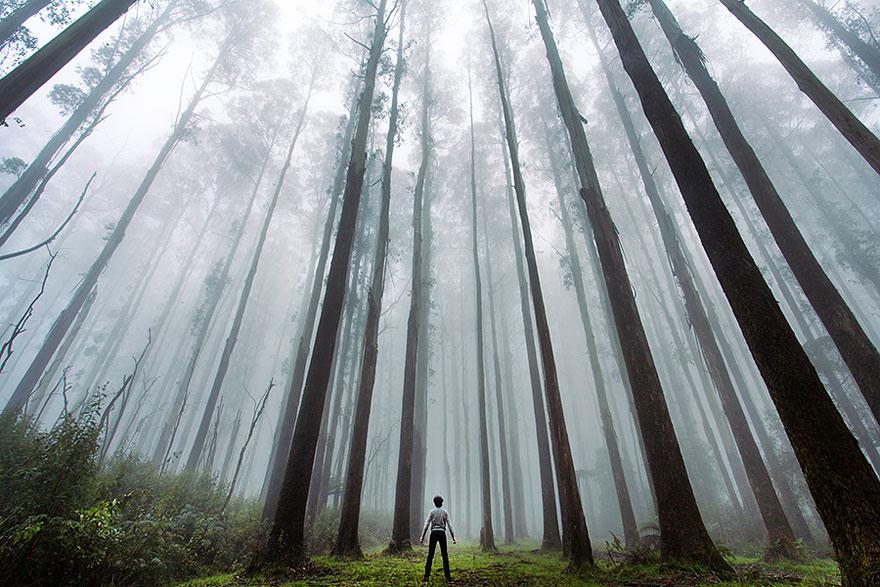 Oameni și natură 2