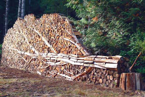 Artă în stivele de lemne