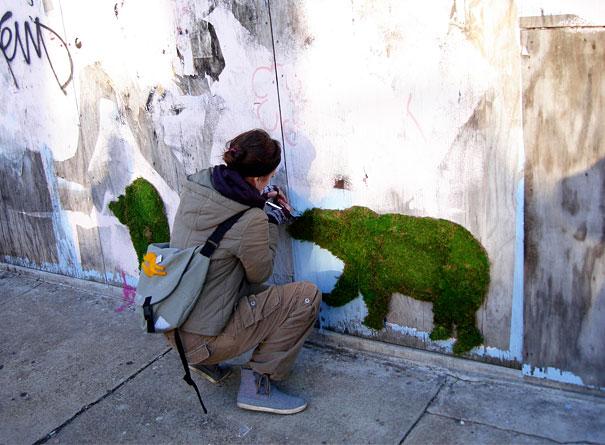 Graffiti ecologic pentru cei pasionați