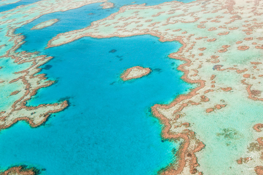 Heart-Reef-QLD__880