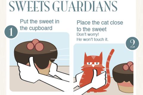 Cum să folosești o pisică