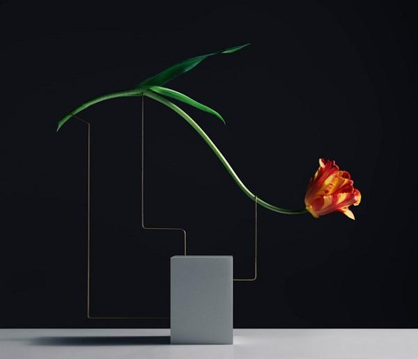 Eleganța florilor