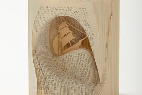 Sculpturi în cărți