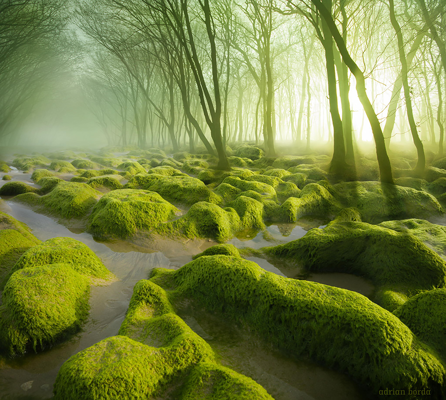 amazing-places-romania-1__880