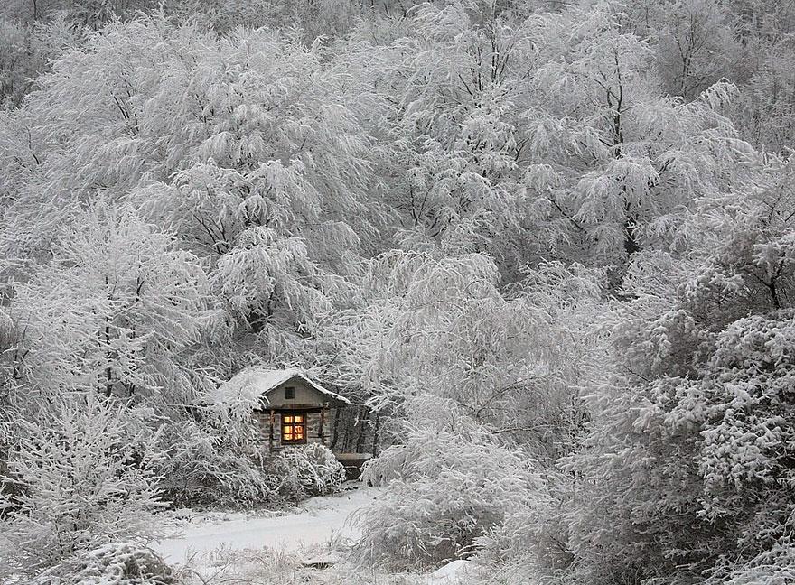 tiny-house-fairytale-nature-landscape-photography-25__880