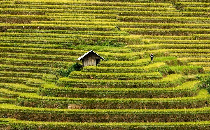 tiny-house-fairytale-nature-landscape-photography-40__880