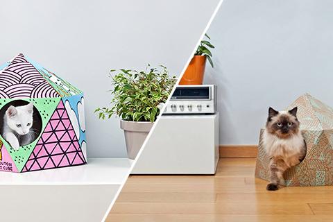 Cubul pentru pisici