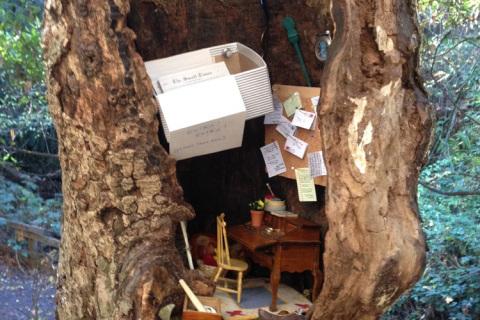 Oficiul postal din copac