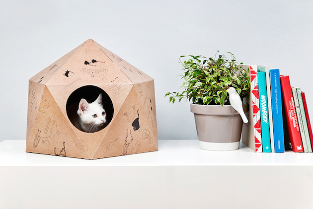 catcube_feeldesain_01