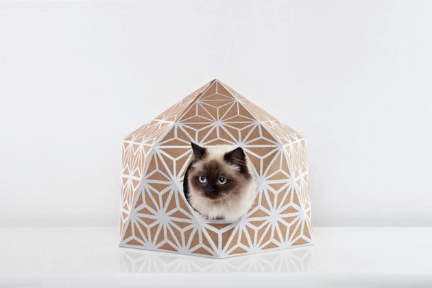 catcube_feeldesain_05
