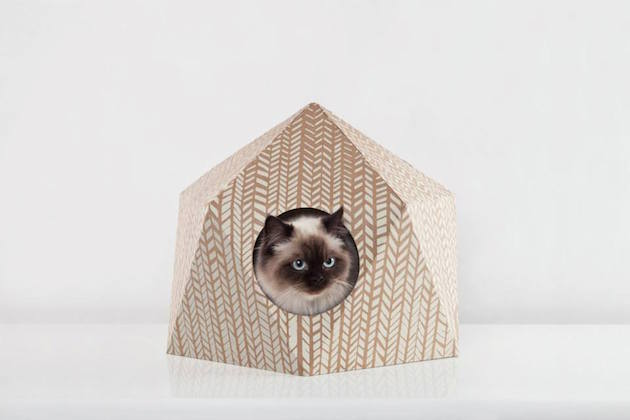 catcube_feeldesain_15