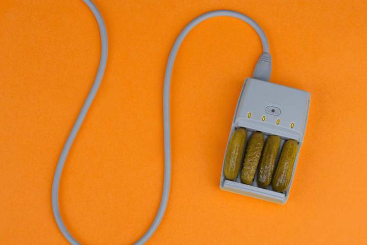 Pickle-Charger