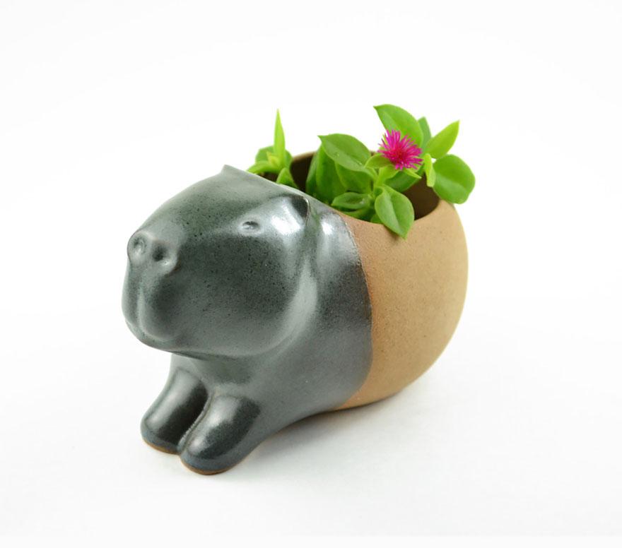 cute-succulent-planters-ceramic-stoneware-priscilla-ramos-cumbachic-2__880
