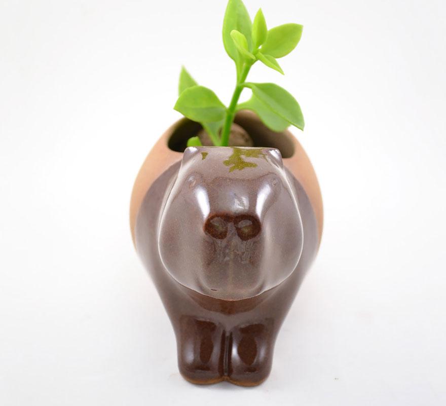 cute-succulent-planters-ceramic-stoneware-priscilla-ramos-cumbachic-4__880