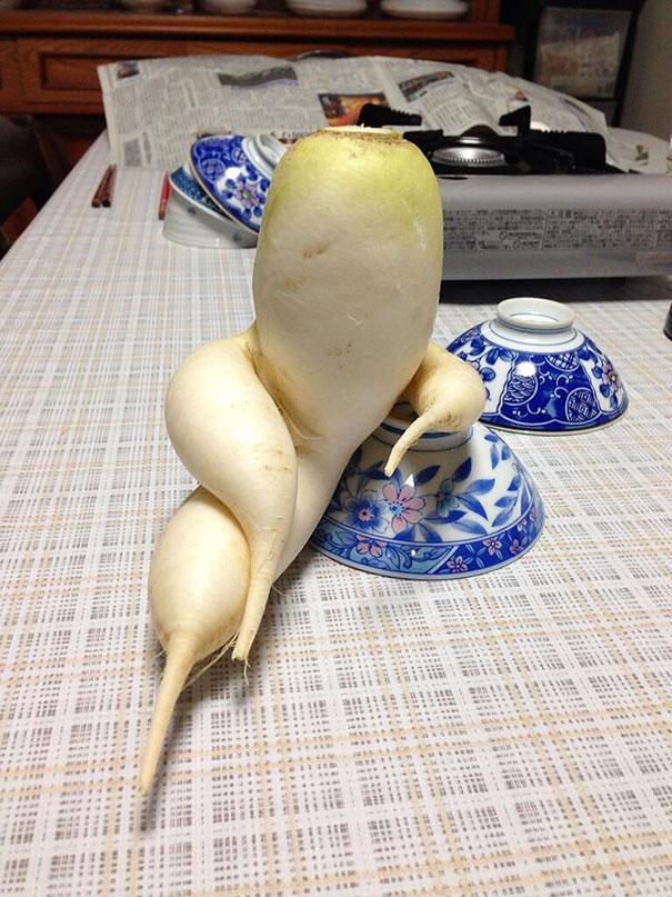 unusual-shape-fruit-vegetables-101__605
