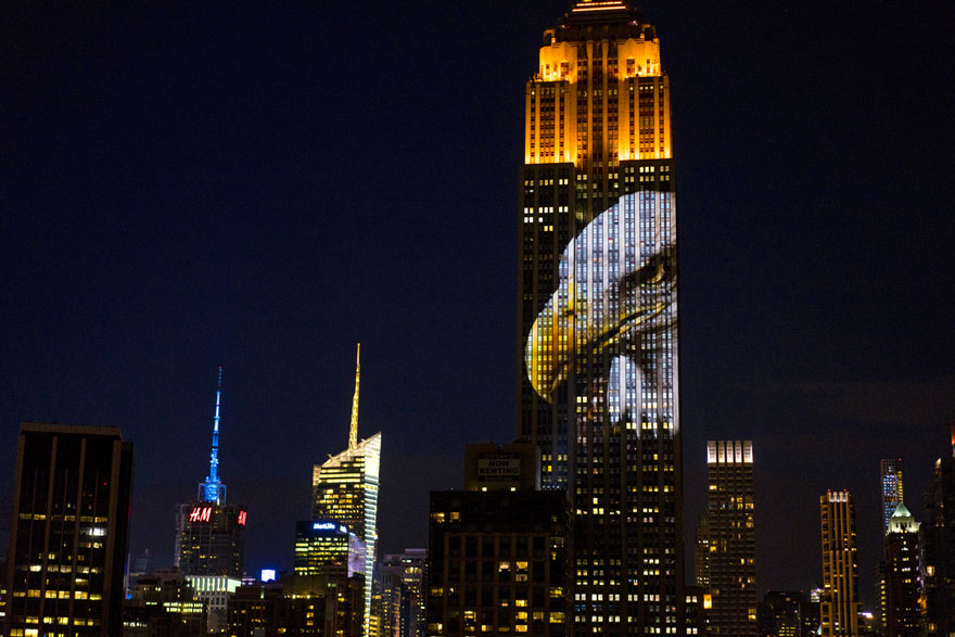 empire-state-projection-endangered-animals-nyc-28