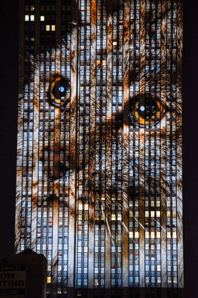 empire-state-projection-endangered-animals-nyc-33